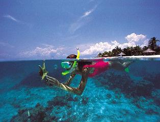 Маски для сноркелинга: плаваем и рассматриваем подводный мир